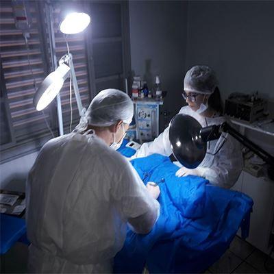 Clínica Veterinária Vetericão